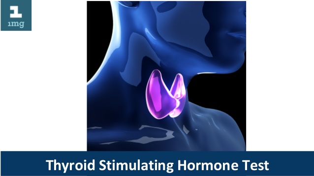 Thyroid Stimulating Hormone: Is N't This Tough As You Assume